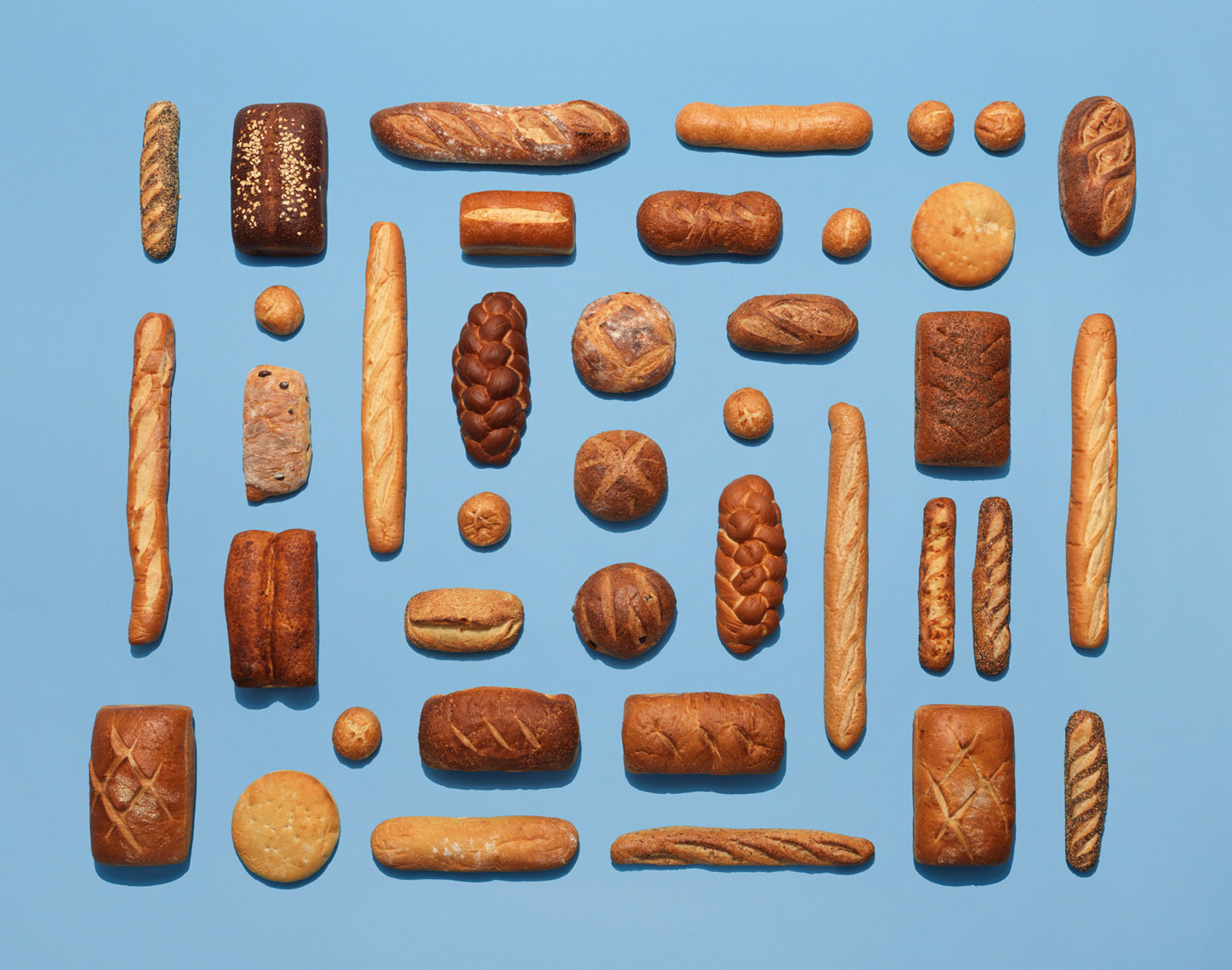 variety of crusty artisanal breads in a rectangle