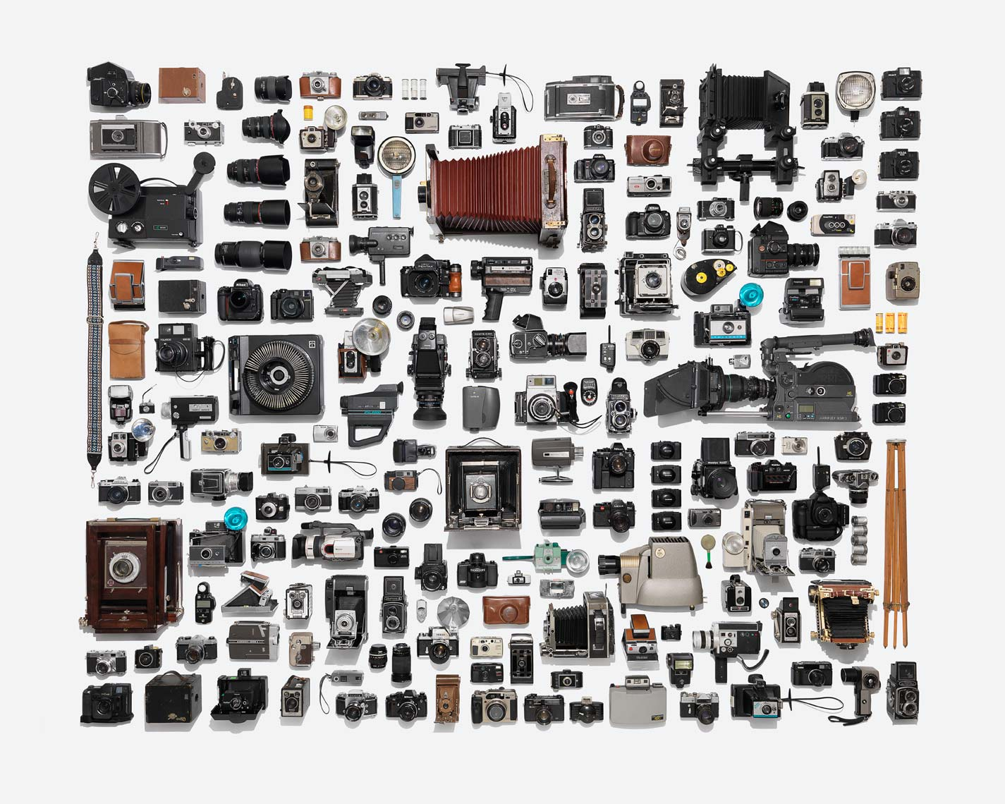 large camera collection from overhead on a white background