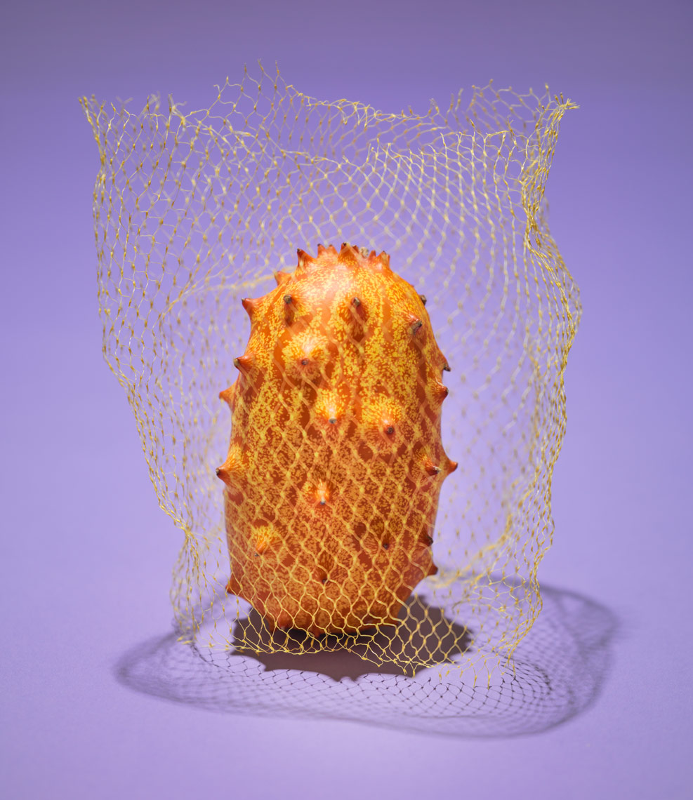 kinowa melon wrapped in produce bag on purple background