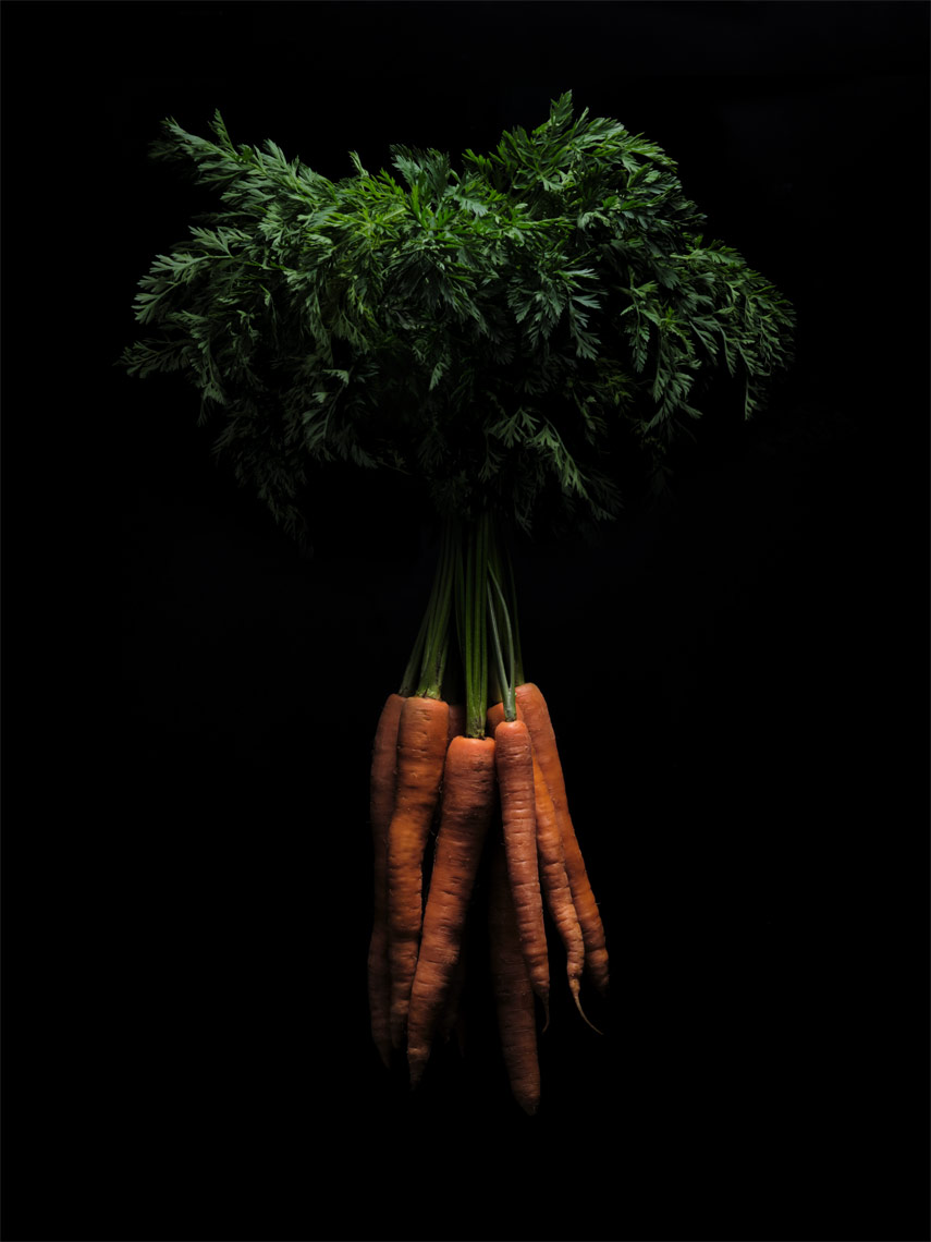 bunch if orange carrots with greens attached on black
